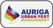 Auriga Urban Pest Management